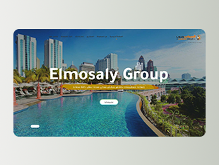 Elmosaly Group